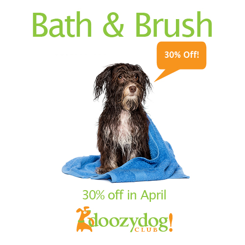 30% Off Bath & Brush April Promo Doozydog! Club