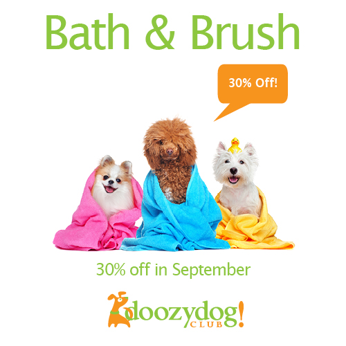 30% Off Bath & Brush September Promo Citydog! Club